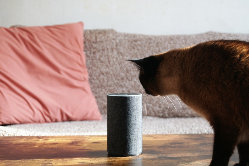 pet-favourite Four Ways Home Automation Can Protect Your Home When You're on Holiday